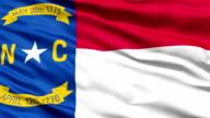 Waving Flag Of US State of North Carolina video