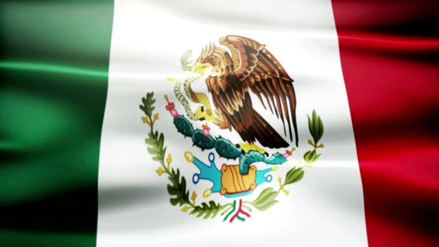 Waving Mexican flag video