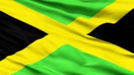 Waving national flag of Jamaica video