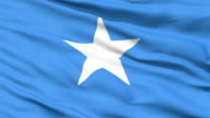 Waving national flag of Somalia video
