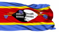Waving national flag of Swaziland video