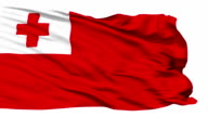 Waving national flag of Tonga video