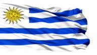 Waving national flag of Uruguay video