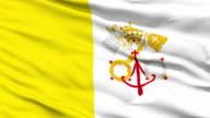 Waving national flag of Vatican video