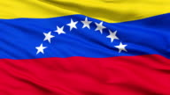 Waving national flag of Venezuela video