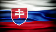 Waving Slovakian flag. video