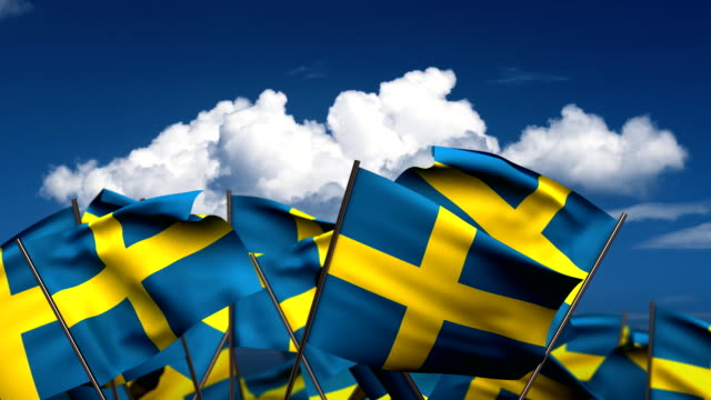 Waving Swedish Flags video