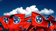 Waving Tennessee State Flags video