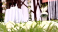Wedding and party decoration video