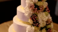 Wedding cake on dessert table video