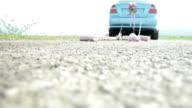 Wedding car. Slow motion video