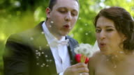 wedding couple blowing on a dandelion video