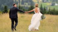 Wedding Couple Walks in Mountains video