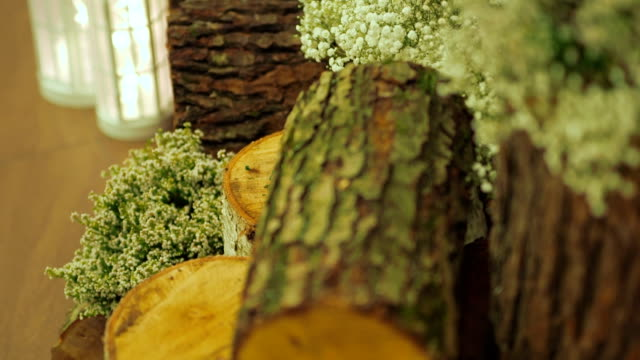 Wedding Decor With Birch Logs, Flowers And Lights video