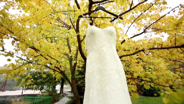 Wedding dress hangs on clothes for hanger on the tree video