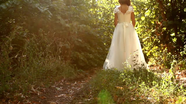 Wedding Forest Nature Vintage Dress Beautiful Background video