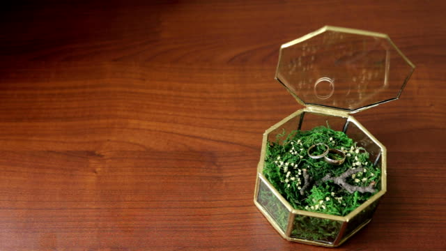 Wedding rings in a glass box filled grass on table video