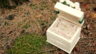 Wedding rings in a wooden box in the woods video