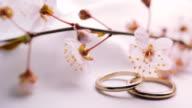 Wedding Rings video