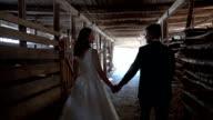 Weeding couple walks through horsebarn video