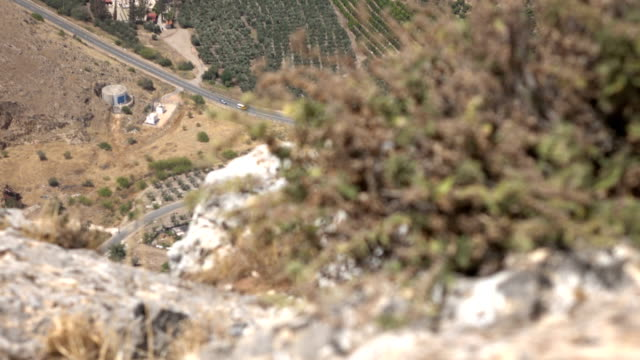 Weeds Clinging to Cliffside and Valley Far Below in Israel video
