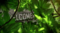 Welcome title hidden in the Jungle Full HD video