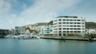 Wellington Harbour Waterfront View video
