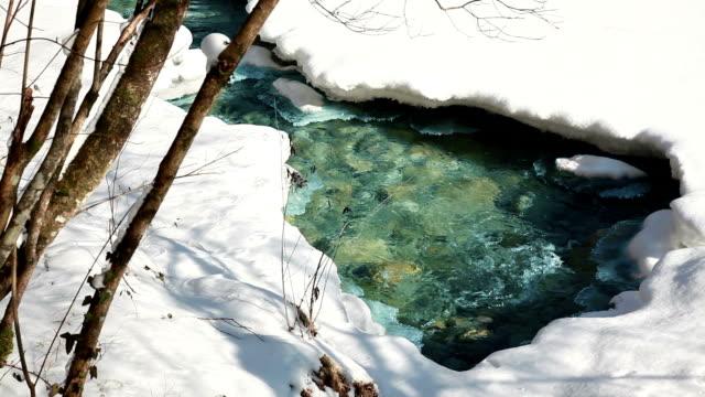 HD - Wellspring in winter video