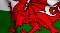 Welsh Flag video