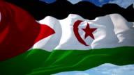 Western Sahara Flag Waving video