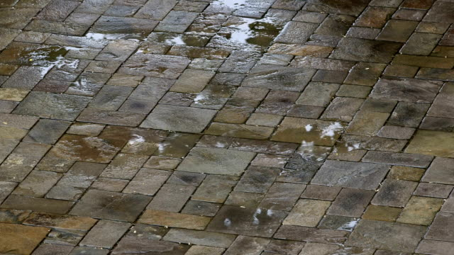 Wet pavement paved by paving slabs in the rain video
