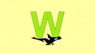 Whale. English ZOO Alphabet - letter W video