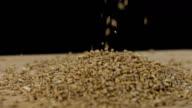 HD SUPER SLOW-MO: Wheat Grains video