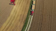 Wheat Harvest And Transportation Flyover video