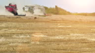 Wheat Harvest in a Hot Sunny Field video