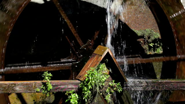 wheel of a watermill in the blackforest video