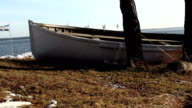 A white boat near a tree video