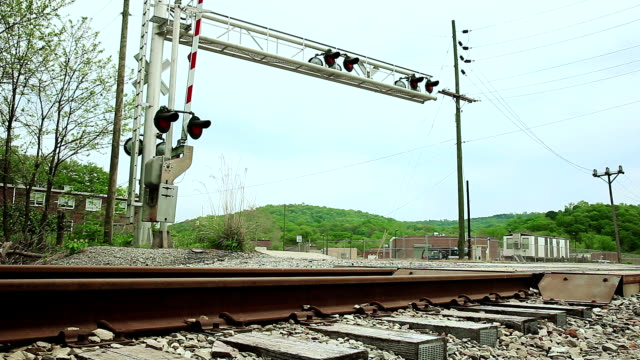 White car at railroad crossing video