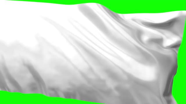 White Flag video