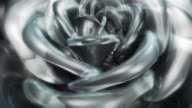 White glass rose video