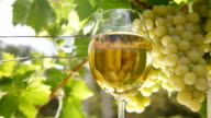 White Grape and Wine Glass video