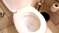 White home toilet closeup video