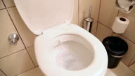 White home toilet closeup video