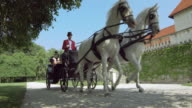 DS White horses pulling a carriage a with family along the castle video
