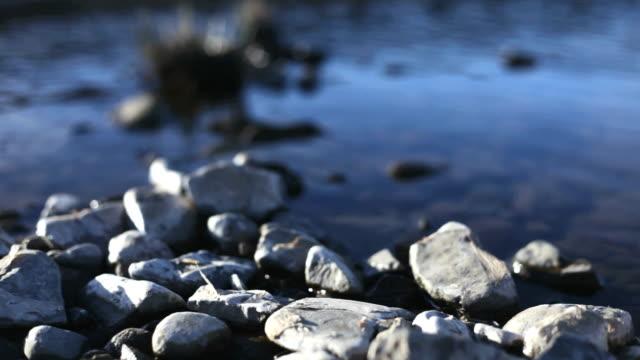 White pebbles on edge of blue stream video