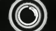 White Swirling Rings with Sparkle Creates Hypnotic Rotating Pattern. Black Background. video