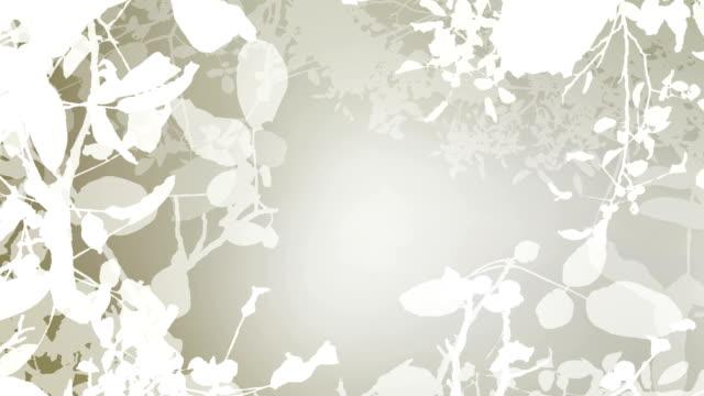 WALNUT TREE IN AUTUMN : white (seamless loopable) video