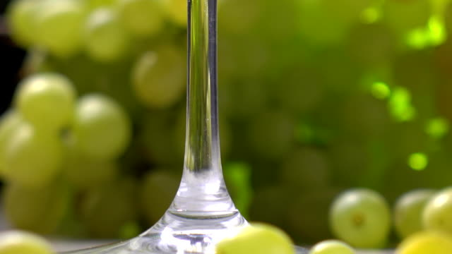 White wine glass and bunch of green grapes. Winery or winemaking concept. FullHD close up video video