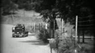 1937: Whitetail deer in middle of road hides in shaded roadside ditch. video