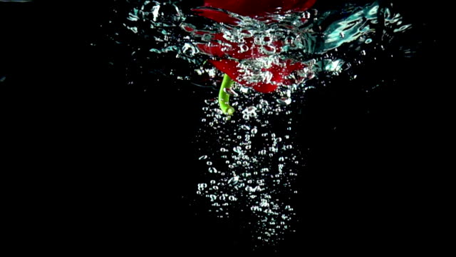 Whole red ripe sweet pepper falls into water super slow motion video video
